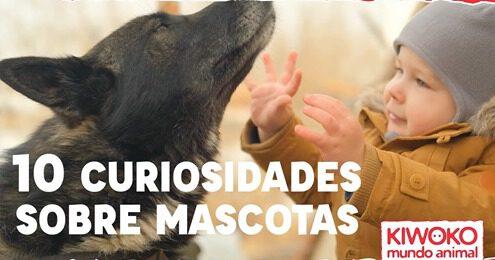 10 curiosidades sobre los animales con Kiwoko del CC La Libertad